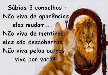 3 COSELHOS